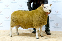 261018 Dingwall - Reserve Champion - Campbell Mill House